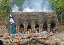 A brick kiln, which is burnt for 24 hours, uses three large trees to fire enough bricks for one small house