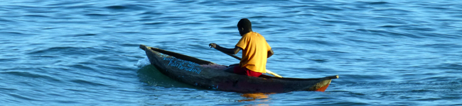 fish-conservation-lake-Malawi