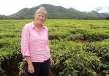 A visit to the Kawalazi Tea Estate