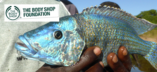 Corporate Partnerships: The Body Shop Foundation is supporting RIPPLE Africa's fish conservation project