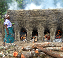 RIPPLE Africa receives many general enquiries asking about the natural environment in Malawi, Africa, and particularly about  deforestation in Africa. To help people wishing to gain a better understanding of some of the complex environmental issues Malawi is facing, we have provided a page about the environment and deforestation in Malawi and, most specifically, the Nkhata Bay District where RIPPLE Africa is based