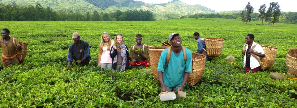 volunteering-in-malawi-africa