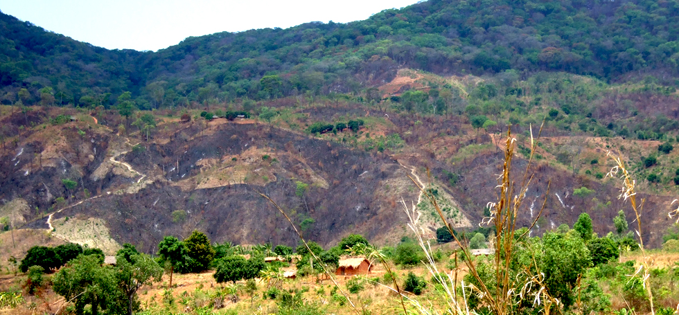 Deforestation of lower slopes by subsistence farmers