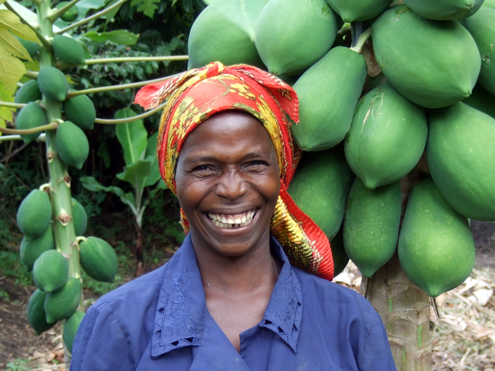 Every household will grow 5 pawpaw and 5 guava trees to provide fruit for the family