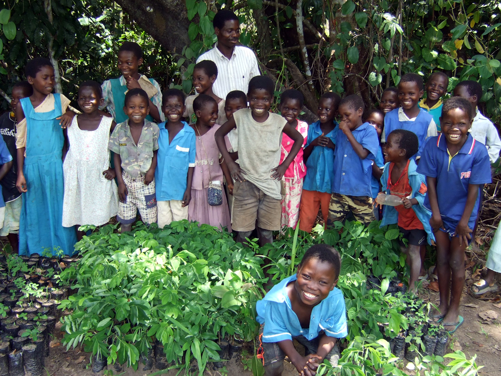 RIPPLE Africa encourages primary schools to plant trees