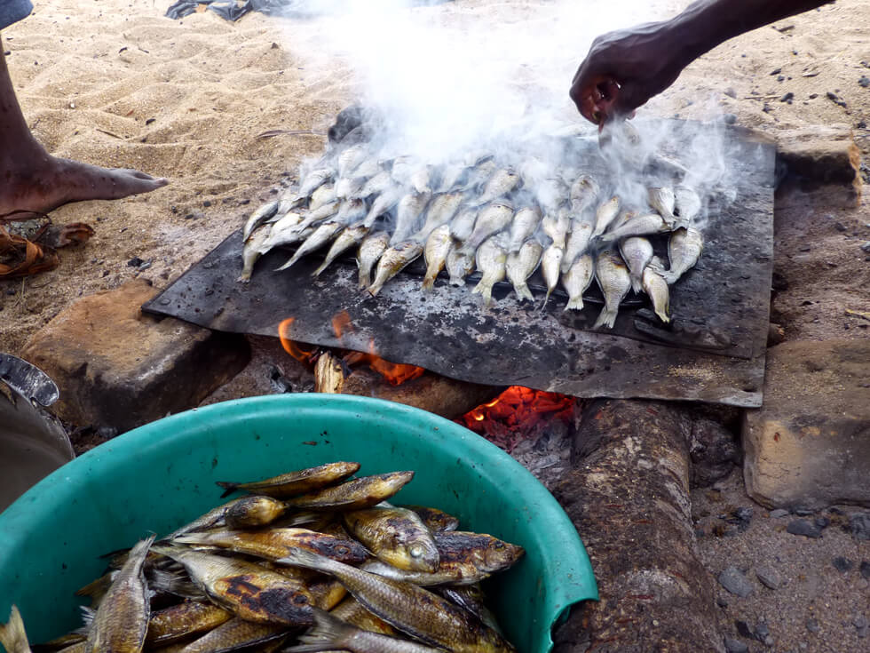 Drying fish over a fire