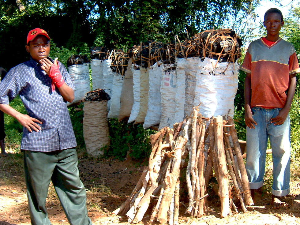 Bags of illegal charcoal for sale by the side of the road