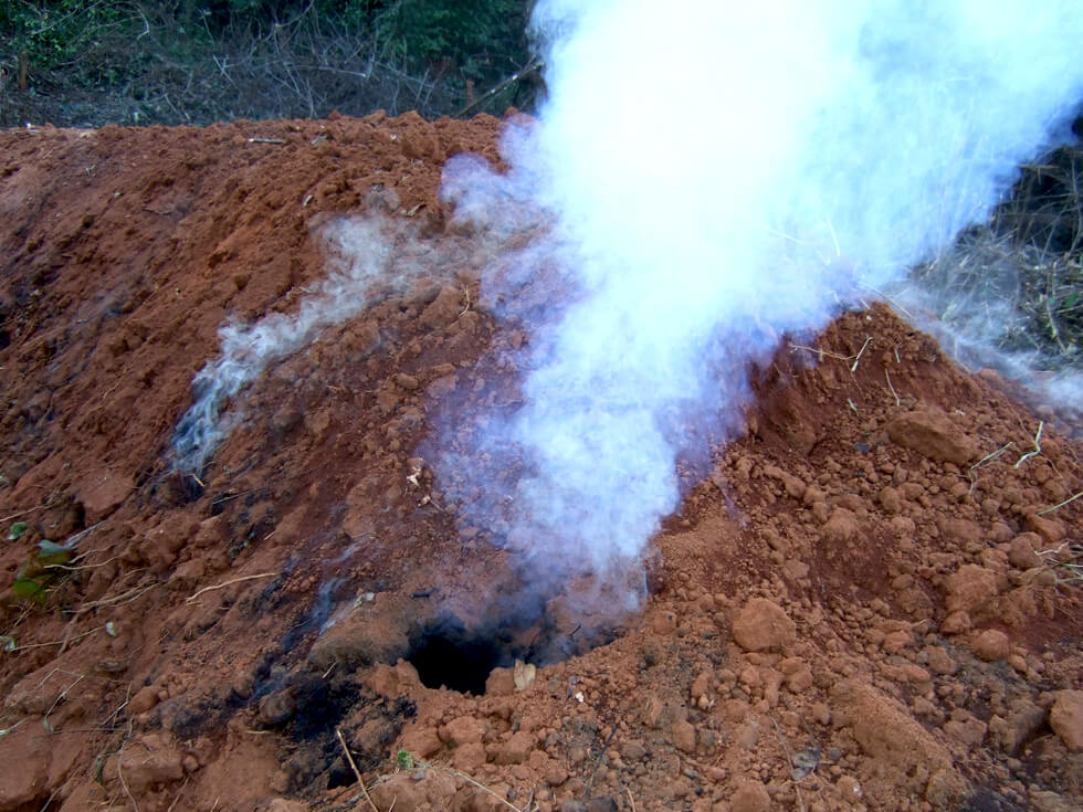 Charcoal being produced illegally
