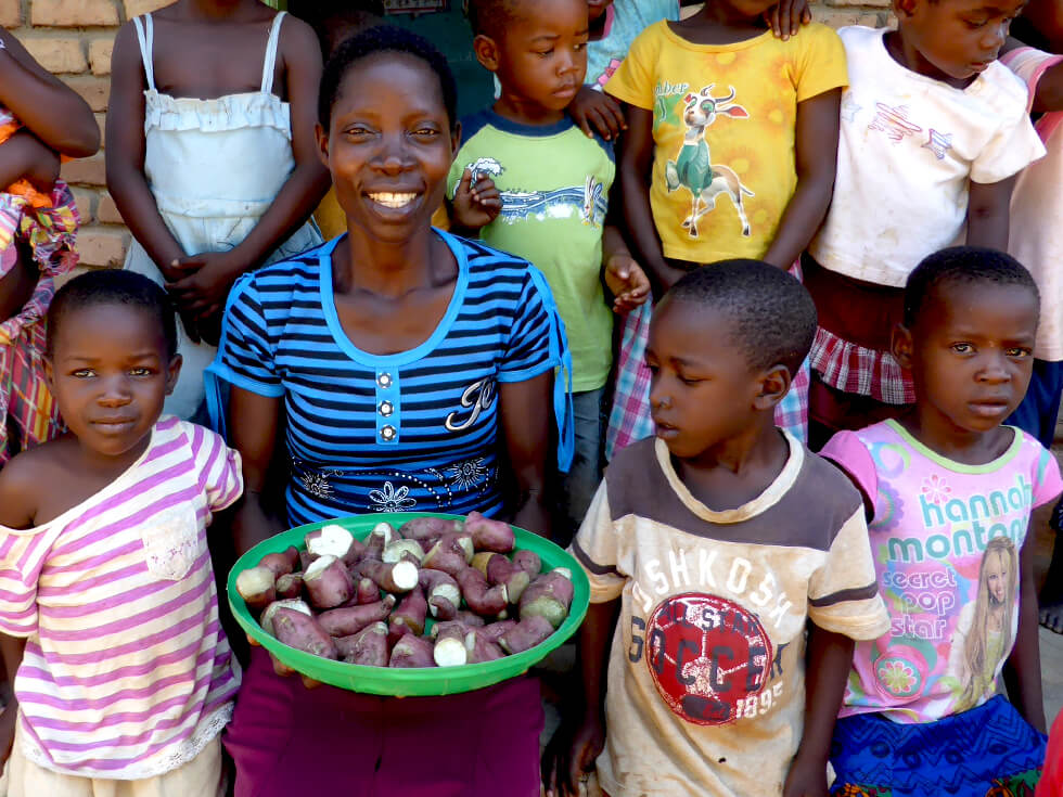 Teachers are paid to provide meals of sweet potatoes to all of the children in all of the pre-schools every day