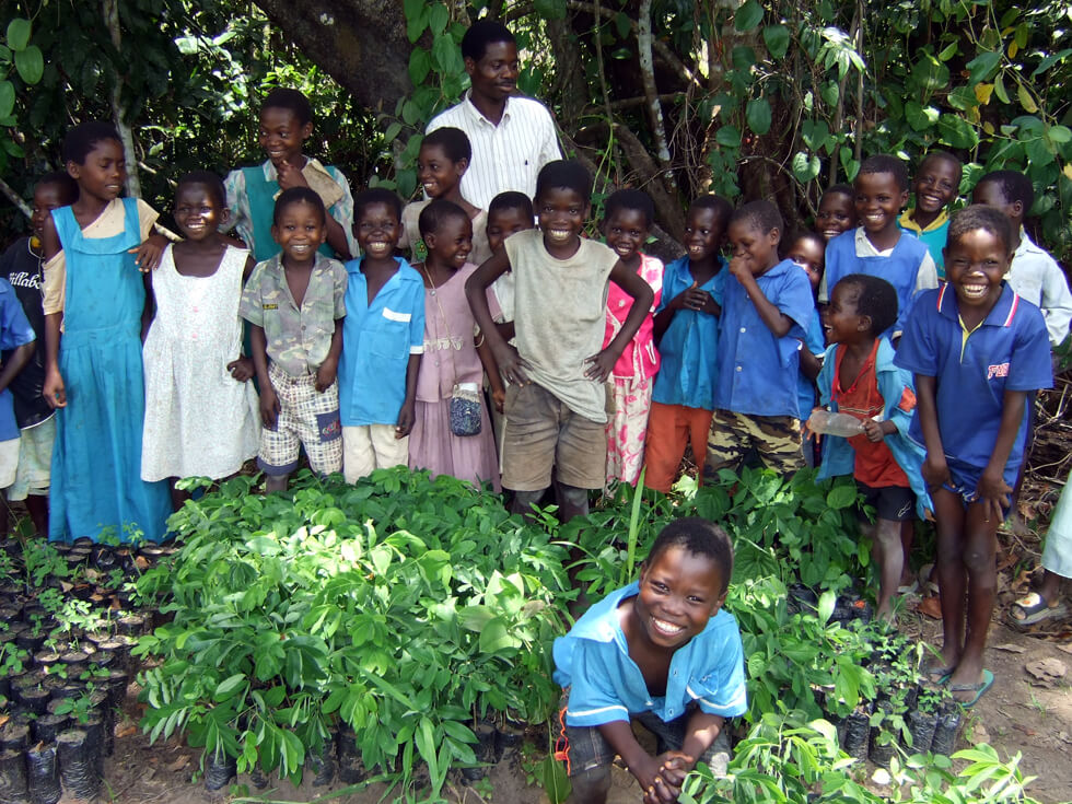 RIPPLE Africa is encouraging primary school pupils to plant trees