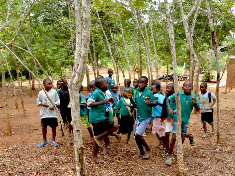 The trees at Makwalakwata Primary School are growing quickly, providing shade and a sustainable source of firewood and poles