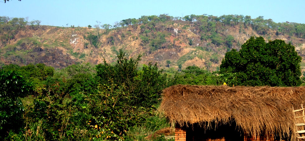 The hills in the distance have been rapidly deforested but, hopefully, the trees will regenerate with conservation