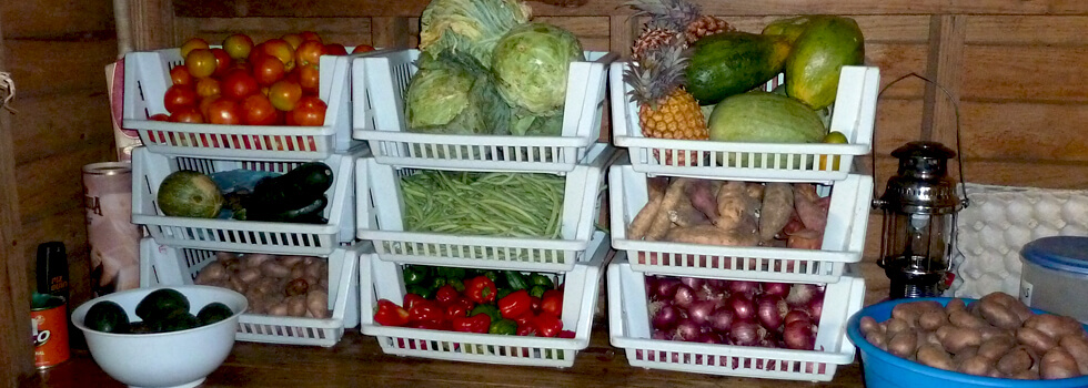 Volunteers can buy some vegetables locally, but The Green Shop in Mzuzu has a much greater variety and will deliver to Mwaya Beach