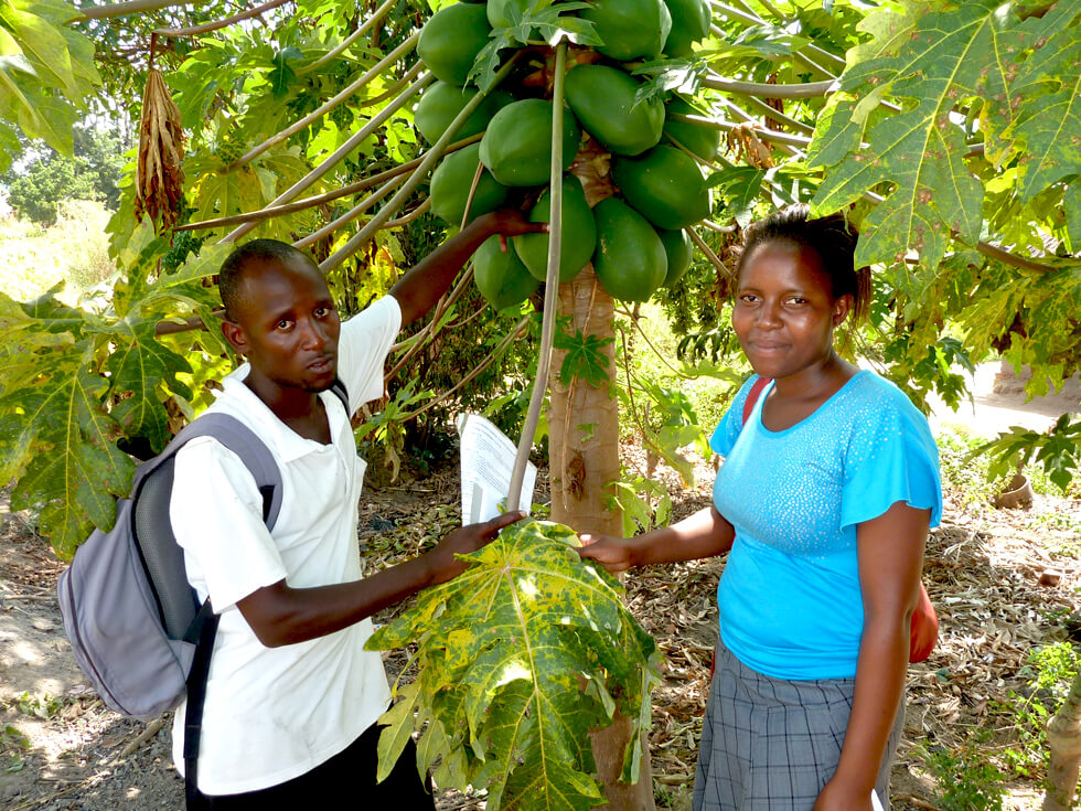 Amon and Joyce, two RIPPLE Africa environmental projects coordinators, with a pawpaw tree