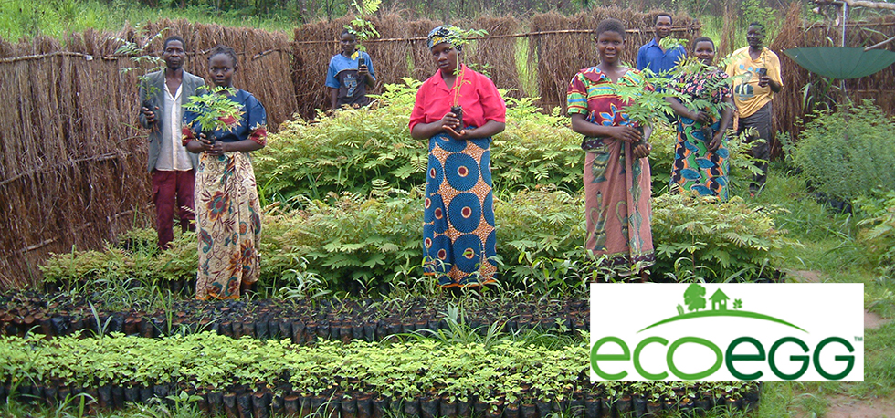 Corporate Partnerships: Ecoegg is RIPPLE Africa's newest corporate partner supporting tree planting