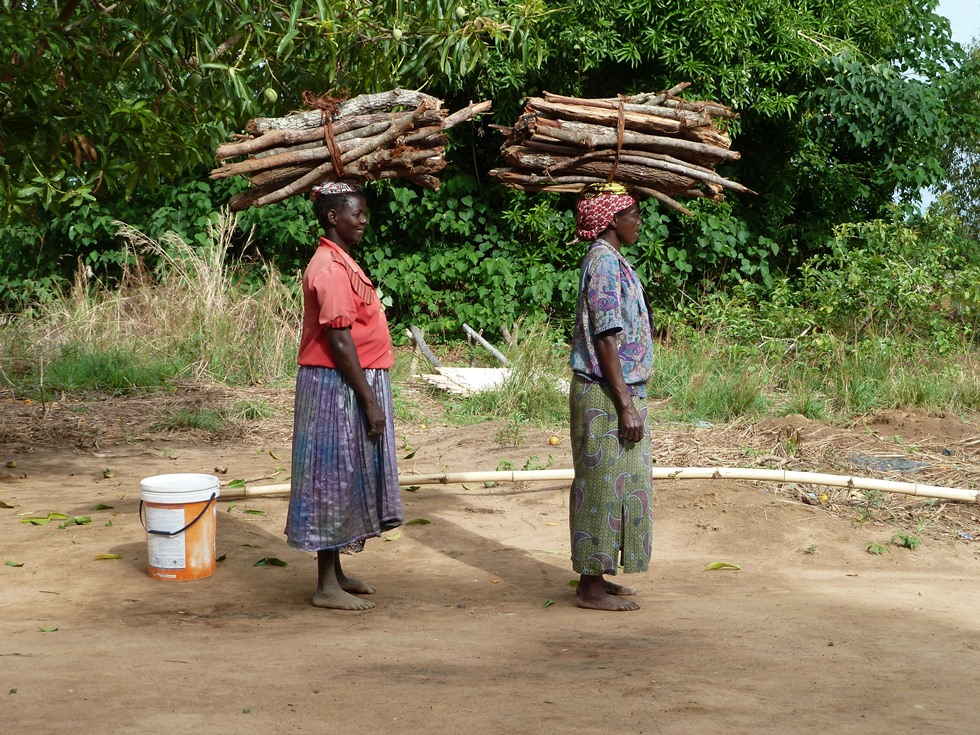 Every week, 80,000 bundles of wood like these are saved by using the Changu Changu Moto cookstoves