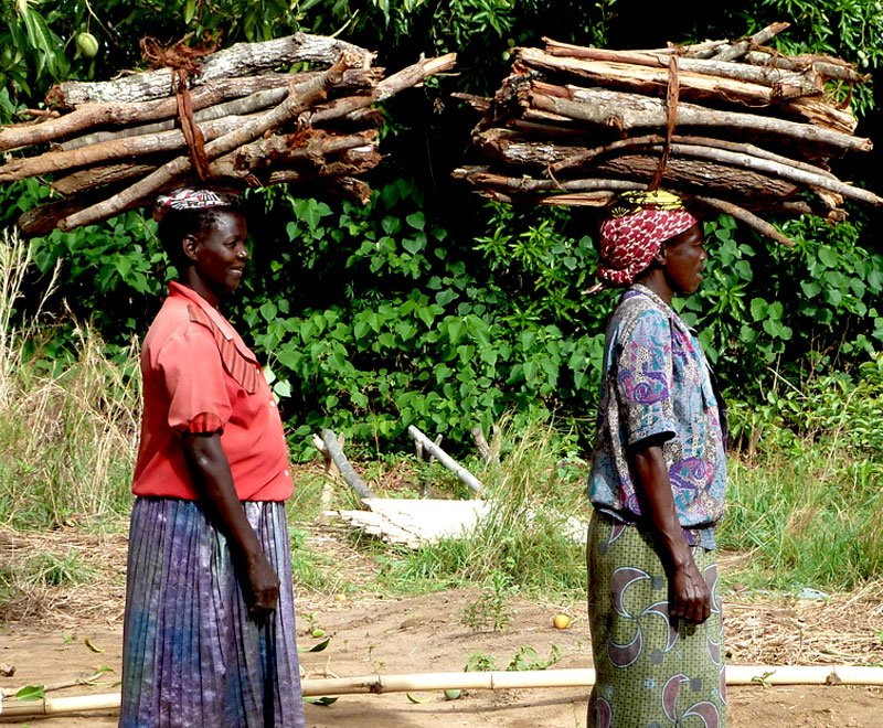 Women carrying firewood Malawi Ripple Africa