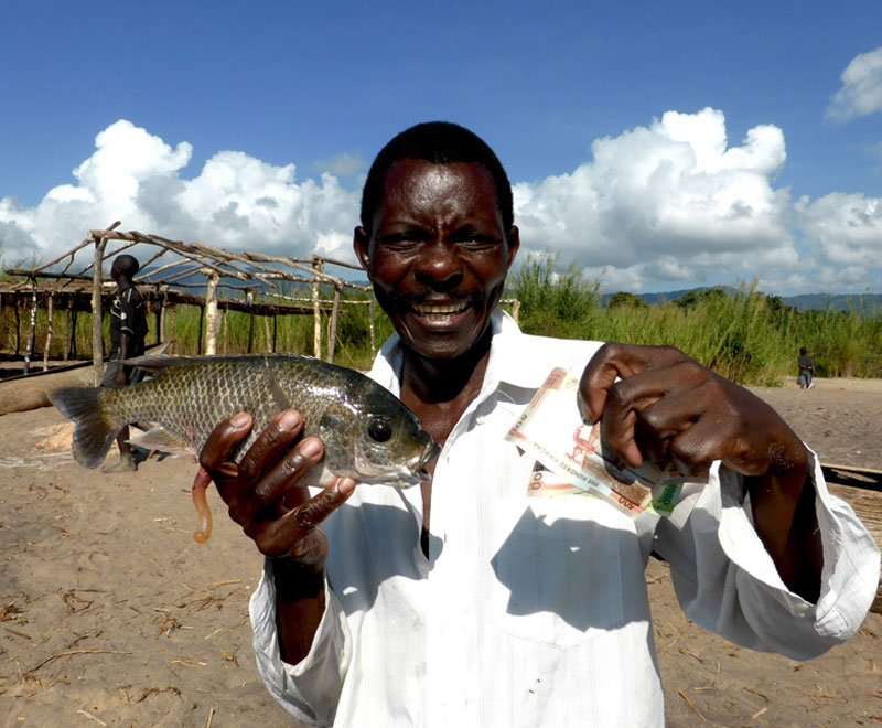 fish-conservation-success-ripple-africa-malawi