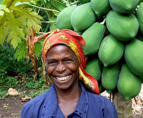 Tree farmer with her papaya tree in Malawi
