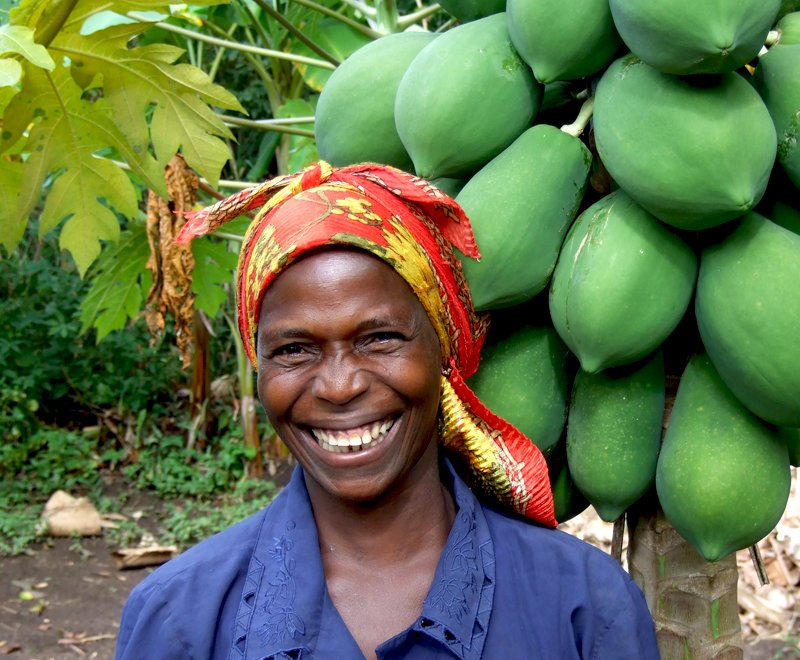 Paw-Paw-tree-malawi-ripple-africa