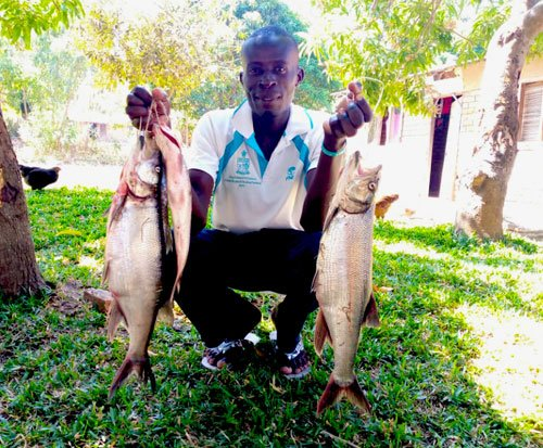 Malawian fish seller Melvin holding up fish from Lake Malawi