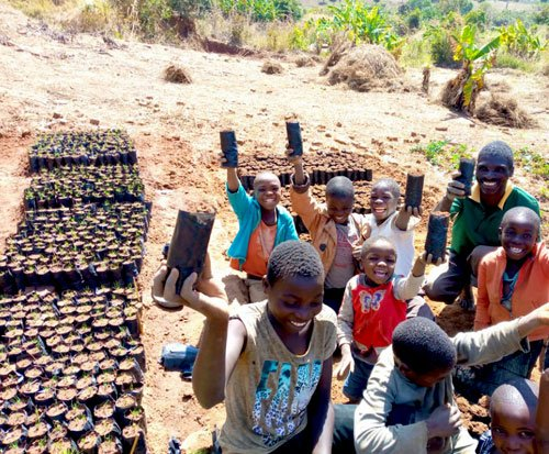 Children help with tree planting in Malawi